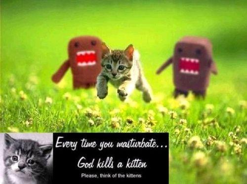 God kills kittens