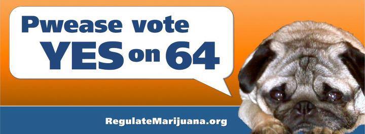 Can You Use Marijuana Cream On Dogs