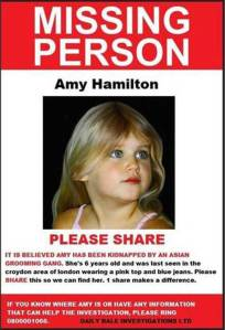 Amy Hamilton trafficking hoax
